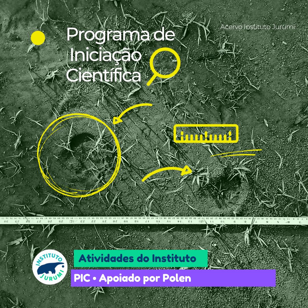 Programa de Iniciação Cientifica