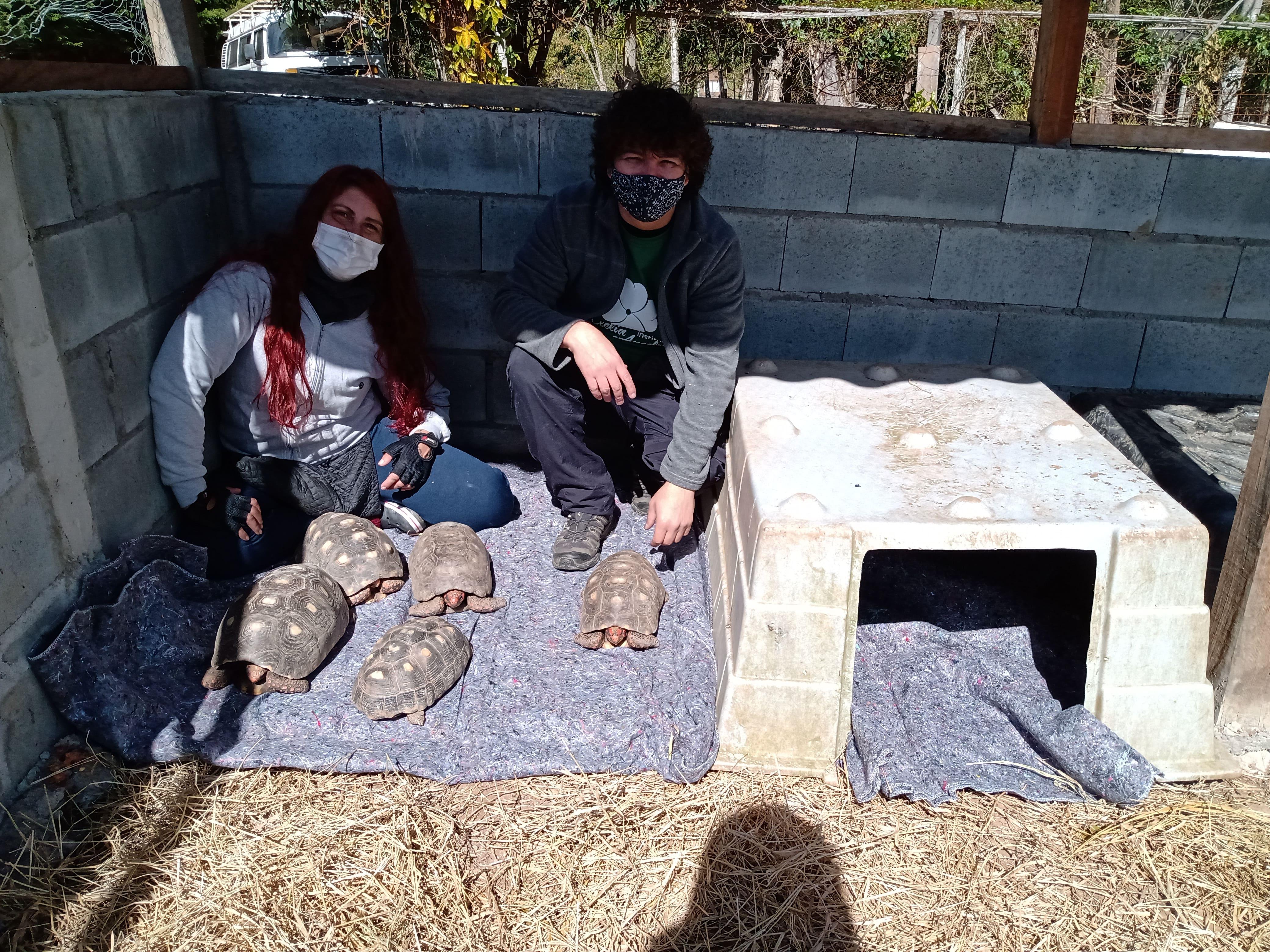 entrega cobertores Santuário Animal Sent