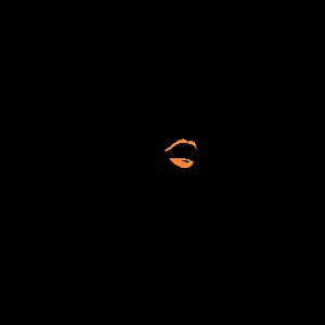 Saúda Afro